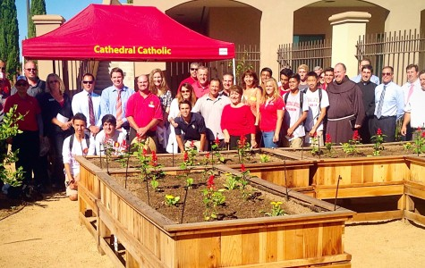 Franciscan priest blesses new St. Francis of Assisi garden