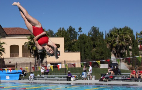 """Cathedral's Dive team """"competing well"""" despite small size"""