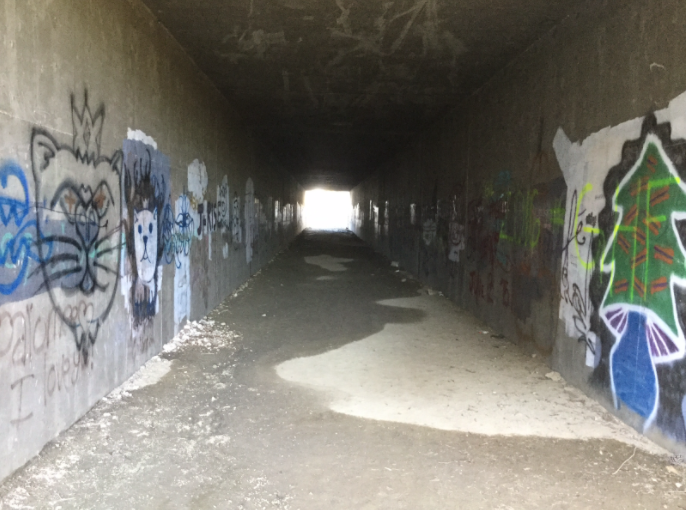Located behind the junior lot and containing offensive phrases, this vandalized tunnel leads into Gonzalez Canyon, 900 square miles of open space and trails.
