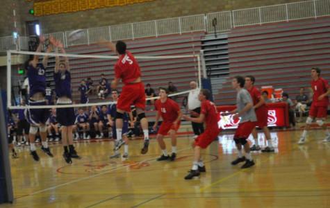 Boys volleyball best in Western League