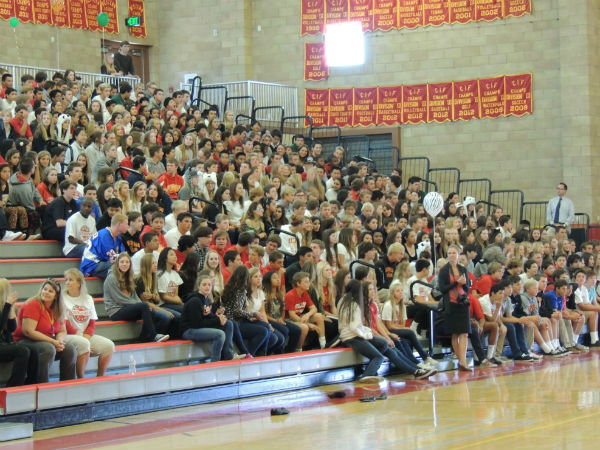 Freshmen explain why they chose to attend CCHS