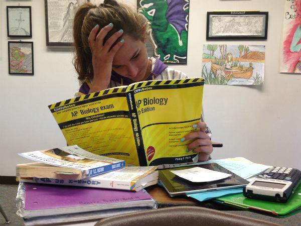 Homework over Break: Student View One