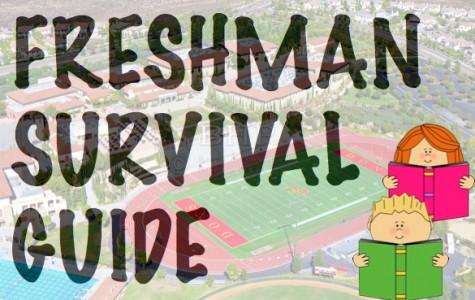 """El Cid's Freshman Year """"Survival Guide"""""""