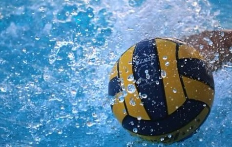Boys water polo to 'make a splash' with highly competitive, talented teams