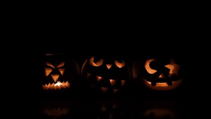 Did you know that 99 percent of pumpkins marketed domestically in the United States are use for Jack-O-Lanterns?