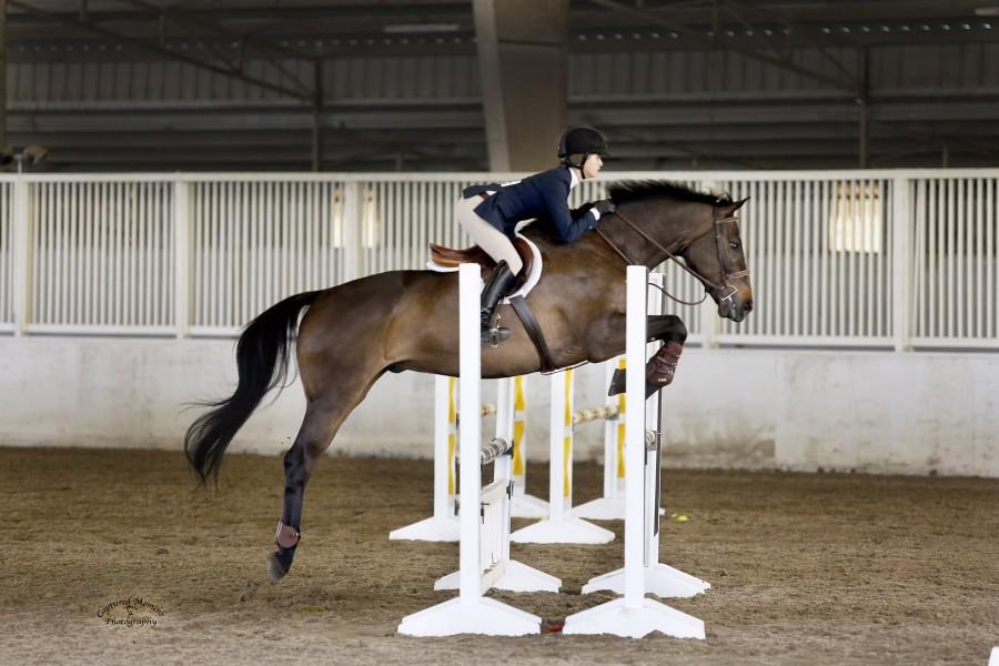 Emma Crosbie '17 competes with her Warmblood horse, Sinatra.