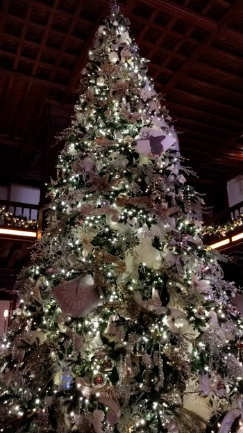 Nearly everywhere around San Diego screams with Christmas cheer and New Year's revelry, including the tree at the Hotel del Coronado.