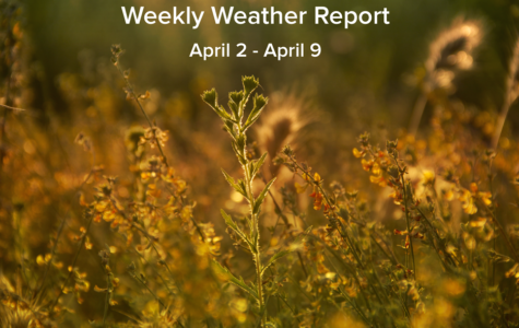 Weekly Weather Report April 2, 2017 – April 9, 2017