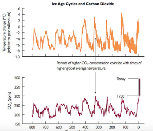 This graph shows the correlation between average global temperatures and higher CO2 concentrations, which  many scientists associate with global warming.