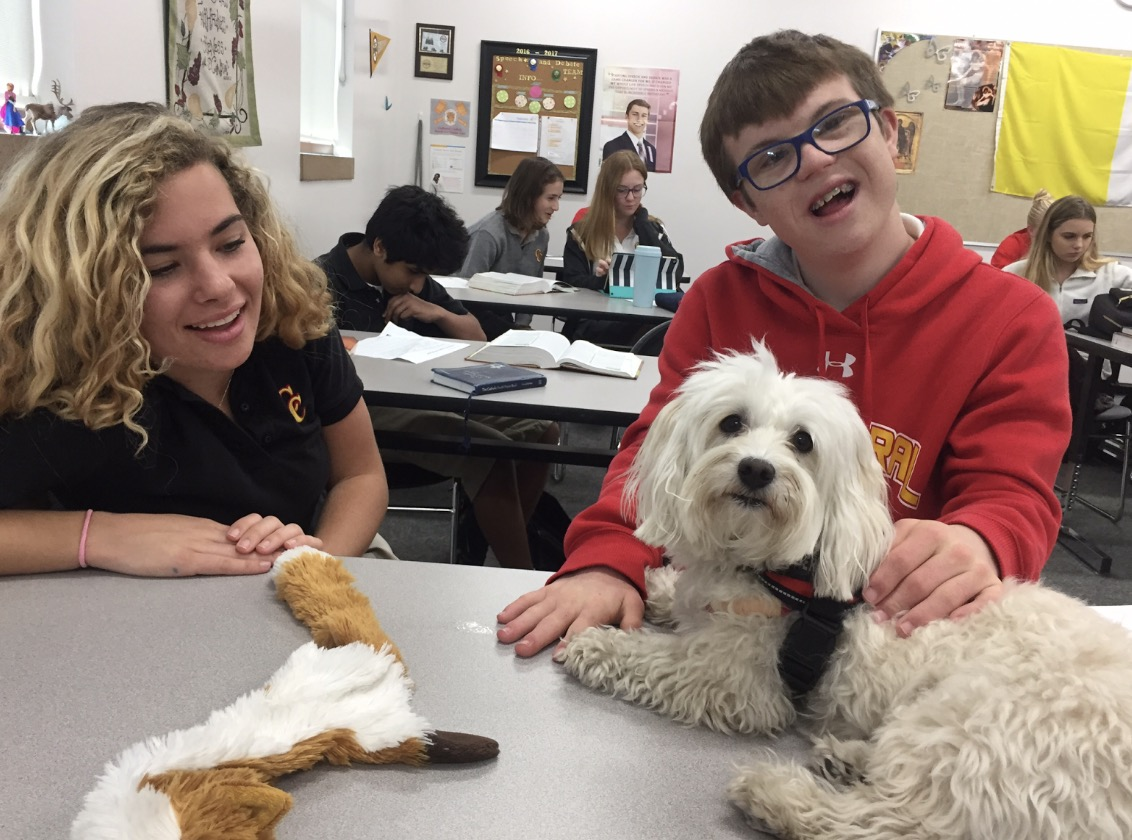 Options student Thomas Bryne '20 and his mentor Mary Henderson '18 play with Ms. Amanda Gustafson's dog Chantilly, a certified therapy dog, who through the organization Caring Paws, brings a little bit of happiness to the stress of finals.