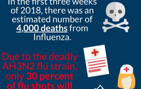 Flu, flu go away