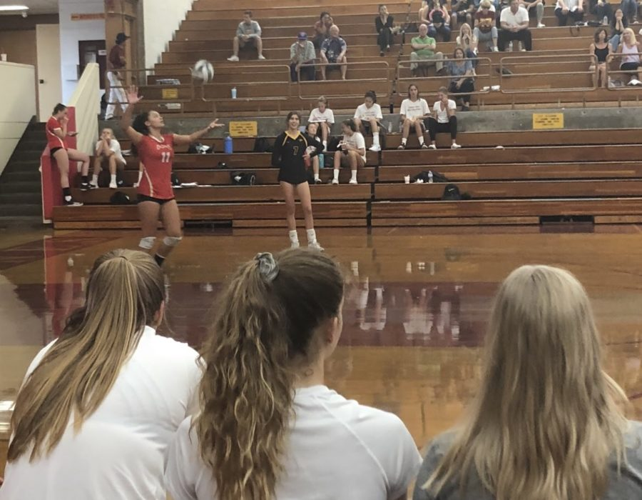 Teammates+watch+as+girls+varsity+volleyball+player+Kira+Smith+%E2%80%9821+serves+the+ball+at+Torrey+Pines+High+School+last+Thursday.