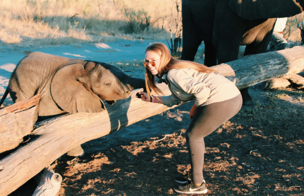 CCHS student Claire Mollenkopf '19 poses with one of her favorite animals in Botswana, Africa. Mollenkopf is no stranger to interacting with plenty of wild animals as she has visited Africa twice.