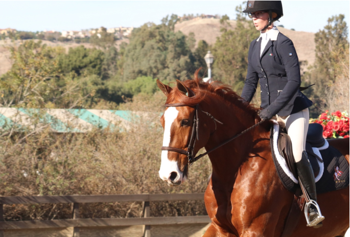 Elizabeth Breitmeyer '20 and her horse Fabio prepare to execute a run in a competition in January.