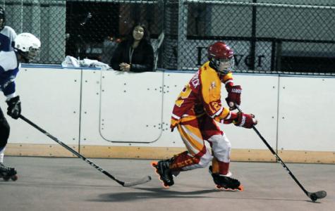 Boys roller hockey