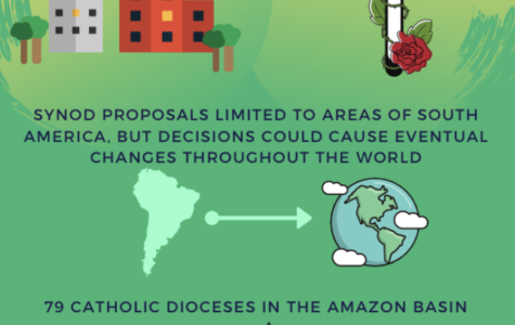 Amazon synod addresses pressing subjects