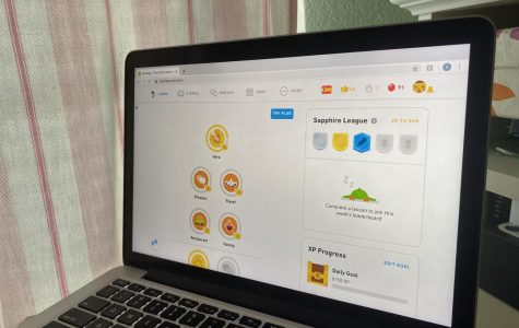 Duolingo is an American platform that includes a language-learning website and mobile app, as well as a digital language-proficiency assessment exam. The app and the website are accessible without charge, although Duolingo also offers a premium service for a fee. Duolingo is a great academic way to spend time well stuck indoors.